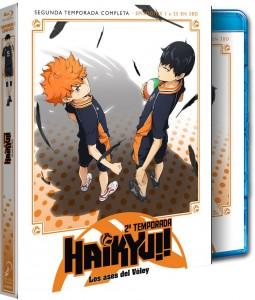 Haikyu!, Los Ases del Vóley - Temporada 2 Completa