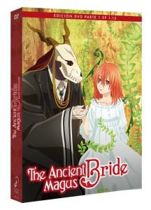The Ancient Magus Bride, Parte 1